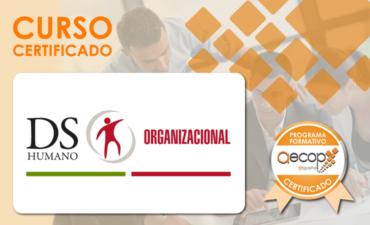Coaching Ejecutivo Sistémico-HS®, Individual y para Equipos. 19