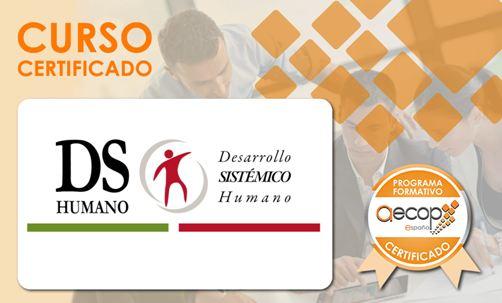 Coaching  Ejecutivo Sistémico-HS®, Individual y para Equipos.