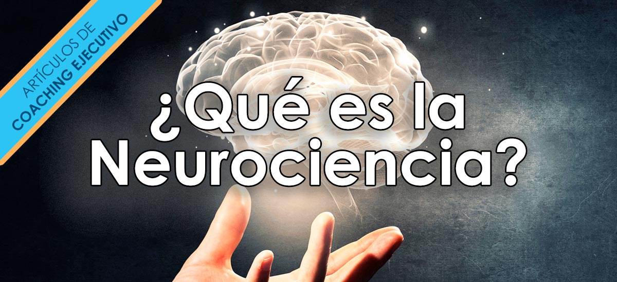 ¿Qué es la Neurociencia?: aplicación en coaching ejecutivo